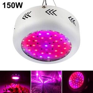 Image 5 - Лампа светодиодная полного спектра для выращивания растений, 150 Вт, 4 шт.