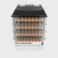 Digital Energy Temperature Control 48 Egg Incubator Full Heat Incubadora Couveuse Household Thermostat for 12V/220V