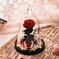 Ainyrose красота и чудовище вечная роза красный искусственный цветок в стеклянном Куполе С светодиодный светильник на День Святого Валентина п...