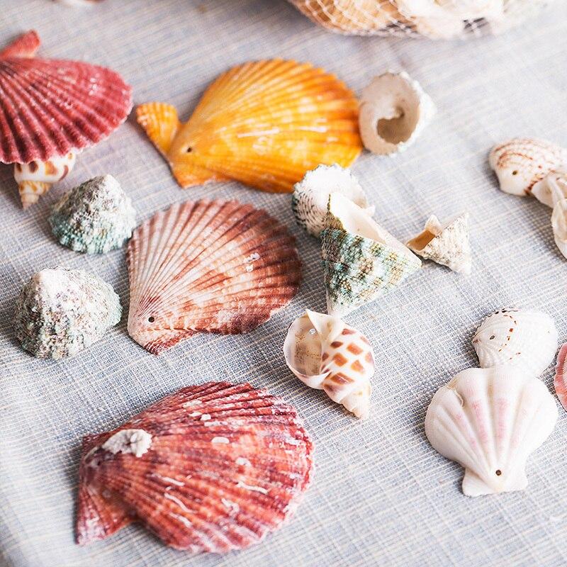 Conchas marinas de moda decoración de acuario Conchas de mar naturales para hacer joyas Conchas Naturais tornillo de maíz DIY Caft decoración de pared INJORA 2 uds Metal Pedal y caja de receptor para 1:10 RC Rock Crawler coche Axial Scx10 SCX10 II 90046 Jeep Wrangler Shell cuerpo