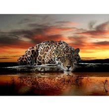 5D DIY Diamond Painting Leopard Tiger Full Diamond Embroidery Cross Stitch Rhinestone Mosaic Painting Sale diy diamond painting 5d white tiger embroidery diamond painting cross stitch tiger animal rhinestone mosaic paintings