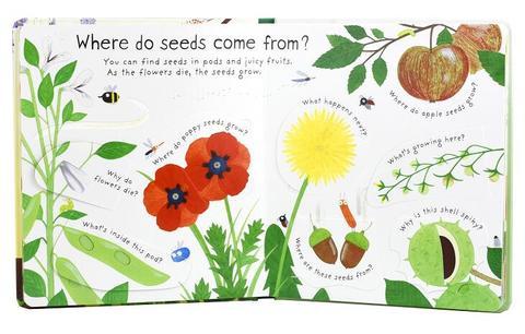 flor ingles educacao flap imagens livros bebe cedo crianca leitura livros
