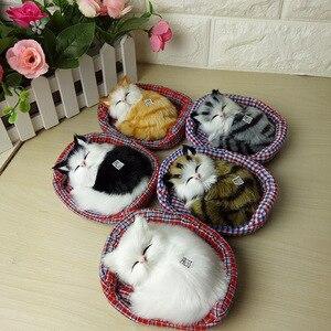 Image 1 - 2019 חדש עיצוב Kawaii סימולציה נשמע שינה חתולים בפלאש צעצוע עם קן האהוב על ילדים יום הולדת מתנה לחג המולד
