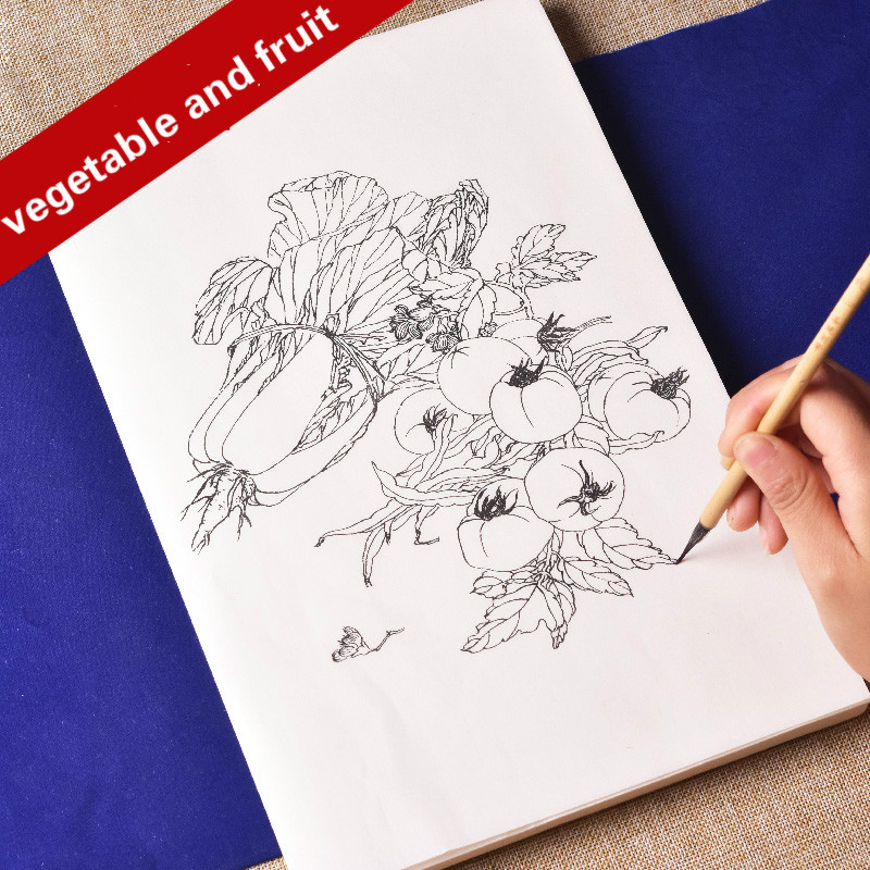 Meticulous Drawing Manuscript Color Ripe Rice Paper Vegetable And Fruit Line Drawing For Beginners Watercolor Chinese Painting Drawing Notebooks Aliexpress