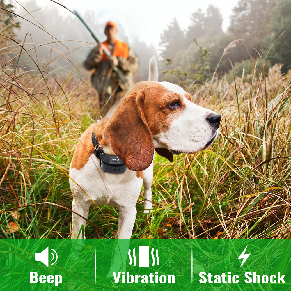 IPETS 618 1 800M Waterproof and Rechargeable electric Dog shock Collar with Remote Control