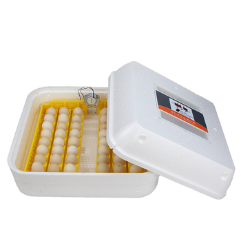 Automatic Household Water Bed Incubator Chicken Small Intelligent Bird Egg Hatching Incubatorincubadora couveuse