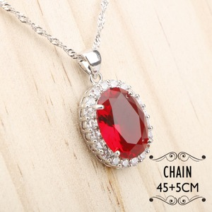 Image 3 - Costume Silver 925 Bridal Jewelry Sets Women Red Stones White Zircon Earrings/Rings/Pendant/Necklace/Bracelets Jewelery Gift Box