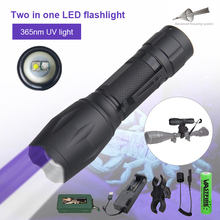 2 in 1 Dual LED 365nm UV+White Flashlight Zoomable Scorpions Torch Inspect Light