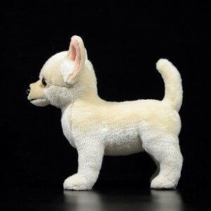 Image 5 - Jouets en peluche pour enfants de 25cm, Chihuahua réaliste, chien, chiot, mignon, peluche, animaux, doux et réel, cadeaux pour enfants