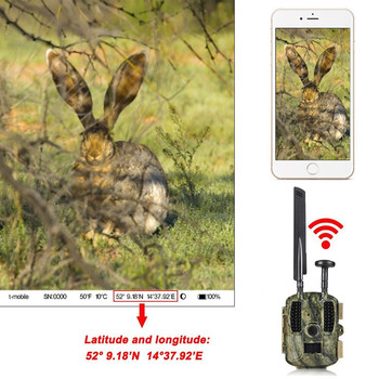 Photo Trap Hunting camera 4G With 8000mah Solar Panel HD Video GPS Wildlife Trail Camera BL480L-P 3