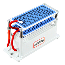 220V/110V Portable Ceramic Ozone Generator 10g Double Integrated Long Life Plate Ozonizer Air Water Purifier