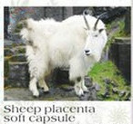 Sheep Placenta Extract Soft s Women Beauty Skin Products Dietary Supplements 850mg*100caps