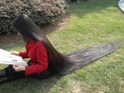 Ayurveda  AMAZING HERBAL HAIR Pack For Hair LOSS HAIR Growth Herbal Pack Amla  Methi  Shikakai Powder