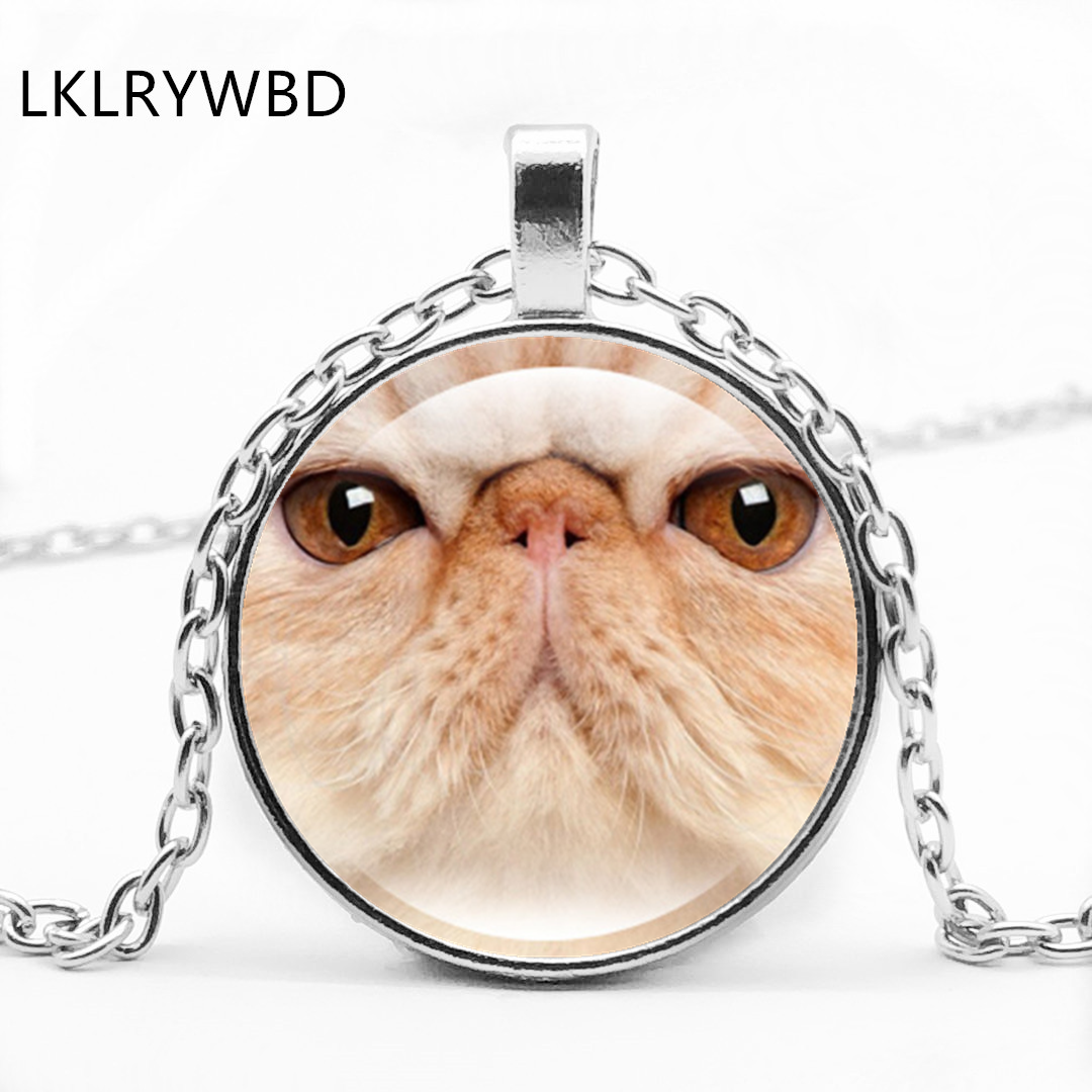 LKLRYWBD / Retro Big Cat Face Round Glass Pendant Necklace Pet Jewelry