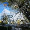 Bird netting stainless steel rope mesh  aviary fence mesh discount