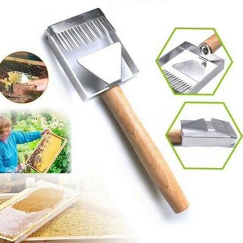 1 * acier abeille ruche décapsulage miel fourchette grattoir pelle apiculture outil fournitures