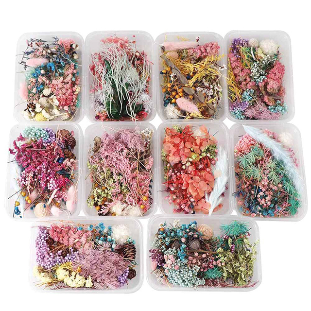 1 Box Random Mix Style Dried Flowers Decoration Natural Floral Sticker Dry Beauty Nail Art Decals Epoxy Mold DIY Filling Jewelry 2