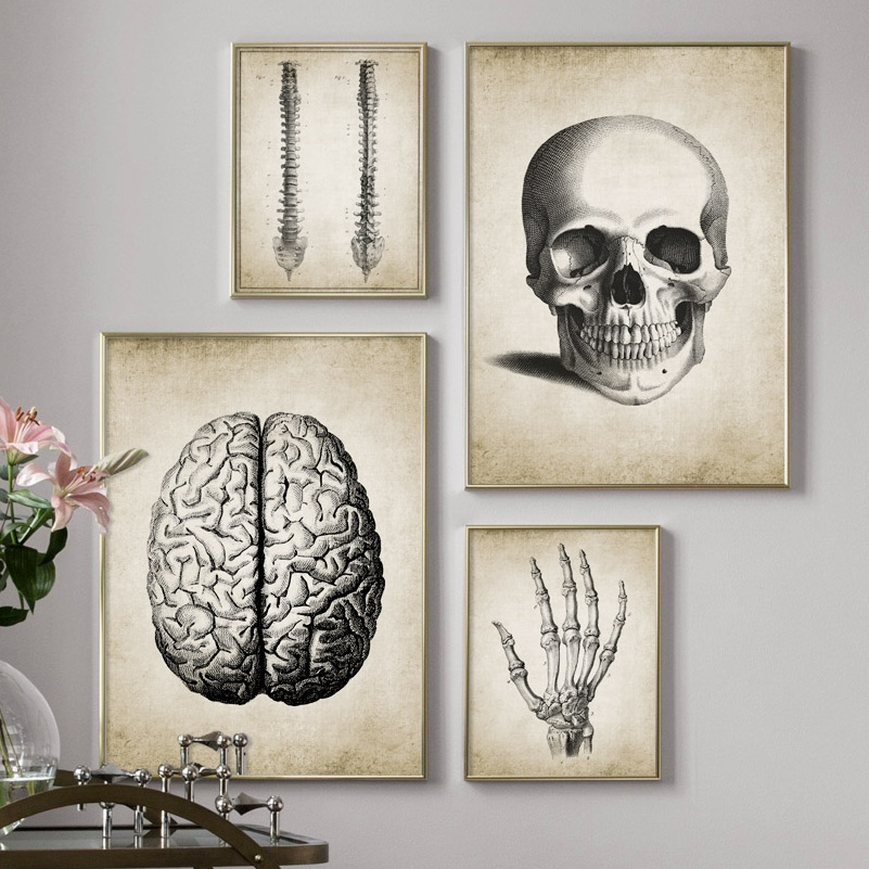 Brain Finger Skull Human Anatomy Poster Vintage Wall Art Canvas Painting Nordic Posters And Prints Wall Pictures For Living Room