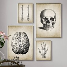 Brain Finger skull Human Anatomy Poster Vintage Wall Art Canvas Painting Nordic Posters And Prints Wall Pictures For Living Room(China)