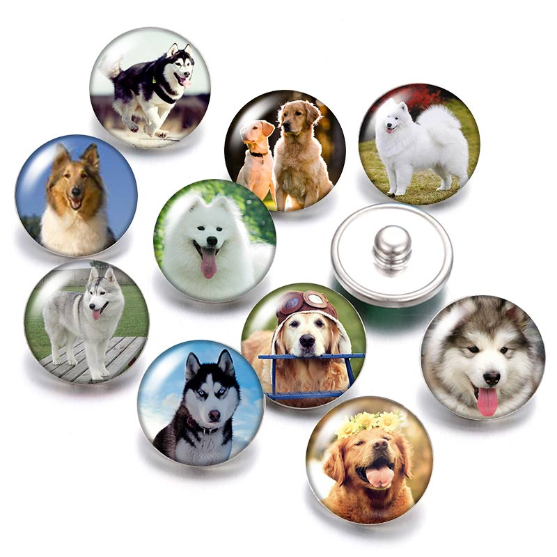 Lovely <font><b>Dog</b></font> Love pet 18mm snap buttons 10pcs mixed round photo glass cabochon style for snap button jewelry image