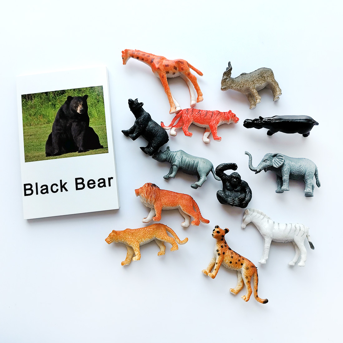 24Pcs/Set Montessori baby Learning English Animals Kids Card Early Educational practical life Toys For Children L2666F Learning & Education cb5feb1b7314637725a2e7: Animals Footprin1 Animals Footprin2 Animals Footprin3 dinosaur Farm Forest Animal 1 Forest Animal 2 Forest Animal 3 Insect Marine Poultry Animals Zodiac
