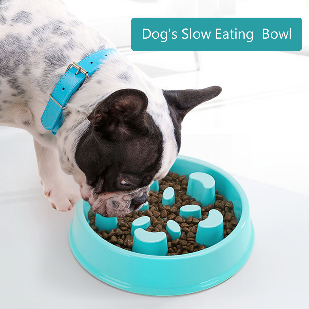 DADYPET Pet Slow Eating Bowl Dog Feeder Dog Food Bowl Eco-Friendly Durable Non-Toxic Preventing Choking Healthy Dish Pet Supply