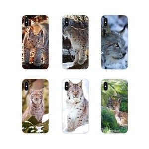 Аксессуары чехлы для телефонов Lynx Caracals Kitten для samsung Galaxy S3 S4 S5 Mini S6 S7 Edge S8 S9 S10 Lite Plus Note 4 5 8 9
