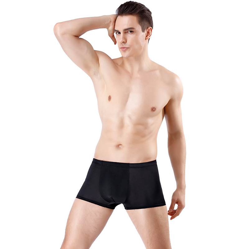 Breathable Summer Male Boxer Underwear Mens Boxer Underpants Shorts Men Sexy Underwear Nylon Men Ice Silk Underwear Boxers Men