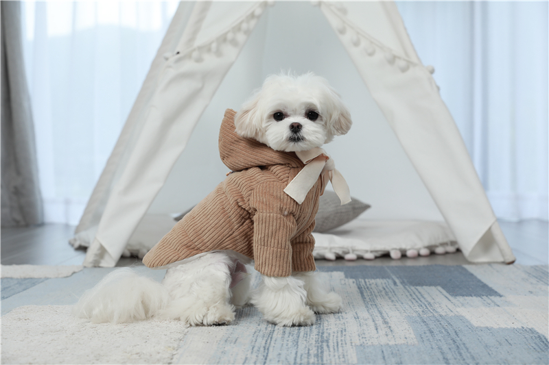 dogs winter apparel thick outfit (4)