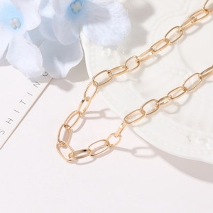 Metal Chain Clavicle Chain European and American Style Neck Chain Necklace Simple Clavicle Necklace Chunky Collares Jewelry