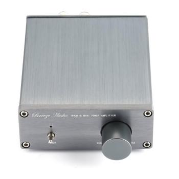 Breeze Amp HIFI Class 2.0 Stereo Audio Digital Amplifier  1