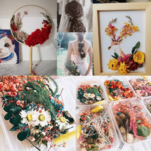1 Box Real Dried Flower Dry Plants For Aromatherapy Candle Epoxy Resin Pendant Necklace Jewelry Making Craft DIY Accessories#X