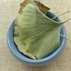 Листья гинкго двулистного китайского чая гинкго, зеленый травяной зеленый чай листьев