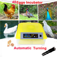 Automatic Egg Incubator 48 Digital Clear Egg Turning Temperature Control Farm Hatchery Machine chicken egg Hatcher Brooder
