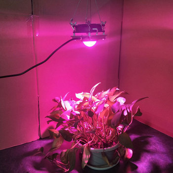 Indoor 50W Cob Full Spectrum Led Plant Grow Light Growing Phyto Lamp For Veg Flower Hydroponic Greenhouse Flower Growing Light cf grow 300w 600w cob led grow light greenhouse hydroponic plant growing lamp full spectrum replace ufo hid grow lighting