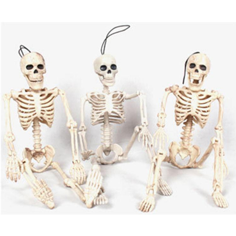 40CM Halloween Horror Decor Flexible Human Anatomical Anatomy Bone Skeleton Model Medical Wholesale Learn Aid