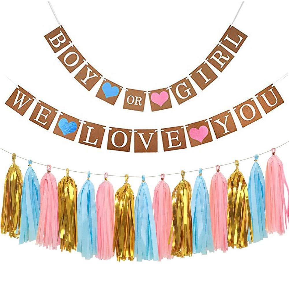 Gender Reveal Party Suppiles Baby Boy Or Girl Banner Paper Tassel Pink Blue Baby Shower Decoration Pompom Tissue Toys