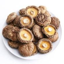Xiang Gu Shiitake Mushrooms Lentinus Edodes