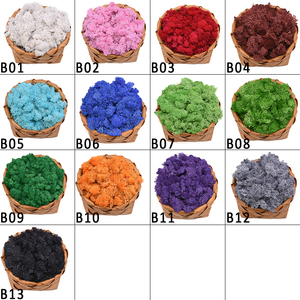 Image 2 - 40g Artificial Plant Eternal Life Moss Mini Garden Micro Landscape Accessories Home Decoration Wall DIY Flower Material