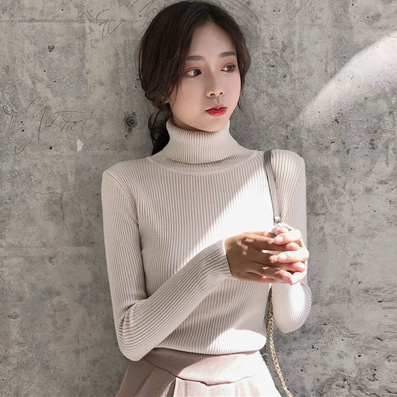 Turtleneck Sweater Women Knitted Pullovers Solid Long Sleeve Winter Clothes Women Plus Size Office Lady Girls Sweaters