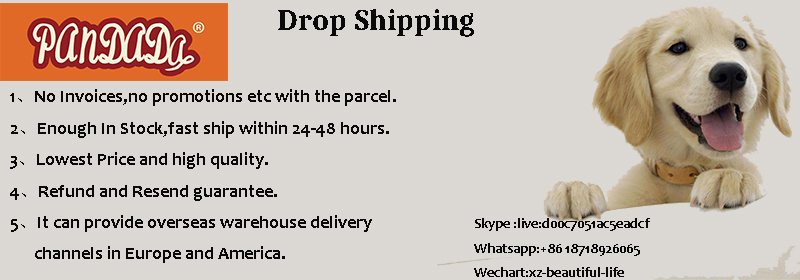 5-Dropshipping