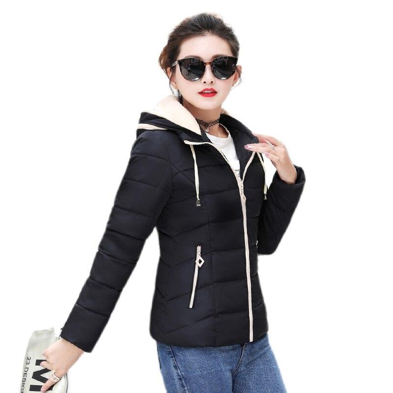 Hooded Short   Basic     Jacket   Winter Autumn   Basic     Jacket   For Women 2019 Slim Candy Color Coat Warm Cotton   Basic   Coat