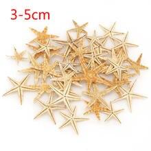 20 шт ракушка из натуральной морской звезды пляжные поделки