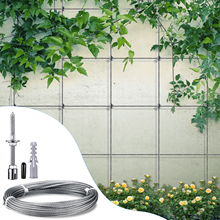 Stainless Steel Wire Cable Trellis For Climbing Plants Professional System Complete Set With Wall Brackets And 3 Mm Steel Cable