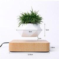 https://ae01.alicdn.com/kf/H7df6002b309844e5962f8ffc0cb6236fn/Levitating-Air-Bonsai-Planters-Levitation-Potted-Plant.jpg