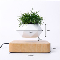 Levitating Air Bonsai Pot Rotation Flower Pot Planters Magnetic Levitation Suspension Floating Pot Potted Plant Home Desk Decor