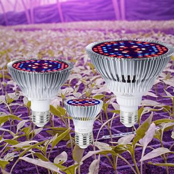Plant Growth Lamp E27 Indoor Seedling Light 30W 50W 80W Led Full Spectrum Bulb E14 Led Grow Light Hydroponic Lighting Phyto Lamp wpd full spectrum 50w plant growth light 30w 80w indoor nursery growth light