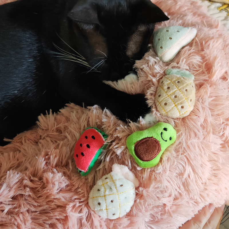 [MPK Catnip Toy] Buy any 3 items get 30% off! New 2019 Cat Face Design Cat Toy, Catnip Cookie Cat pillow 28