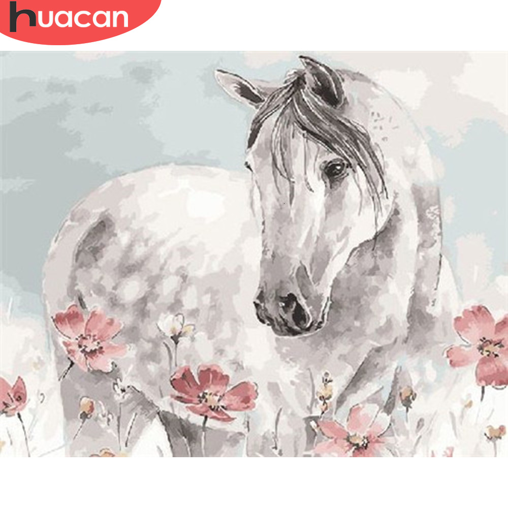 HUACAN Painting By Numbers Horse Acrylic Paint By Numbers Kit DIY Wall Art Pictures Coloring Home Decor