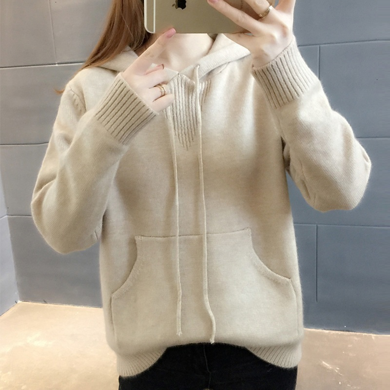 Autumn Winter Sweater Women Long Sleeve Pullover Women Basic Sweaters Women 2019 Korean Style Knit Tops Femme Hooded Sweaters